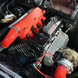 Engine showing red silicone hoses